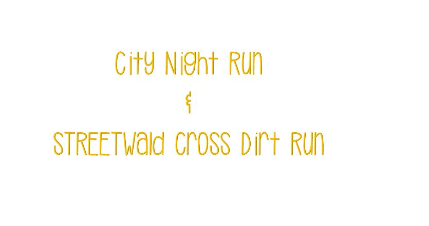 10. City Night Run & 2. STREETWald Cross Dirt Run 25.02.2017