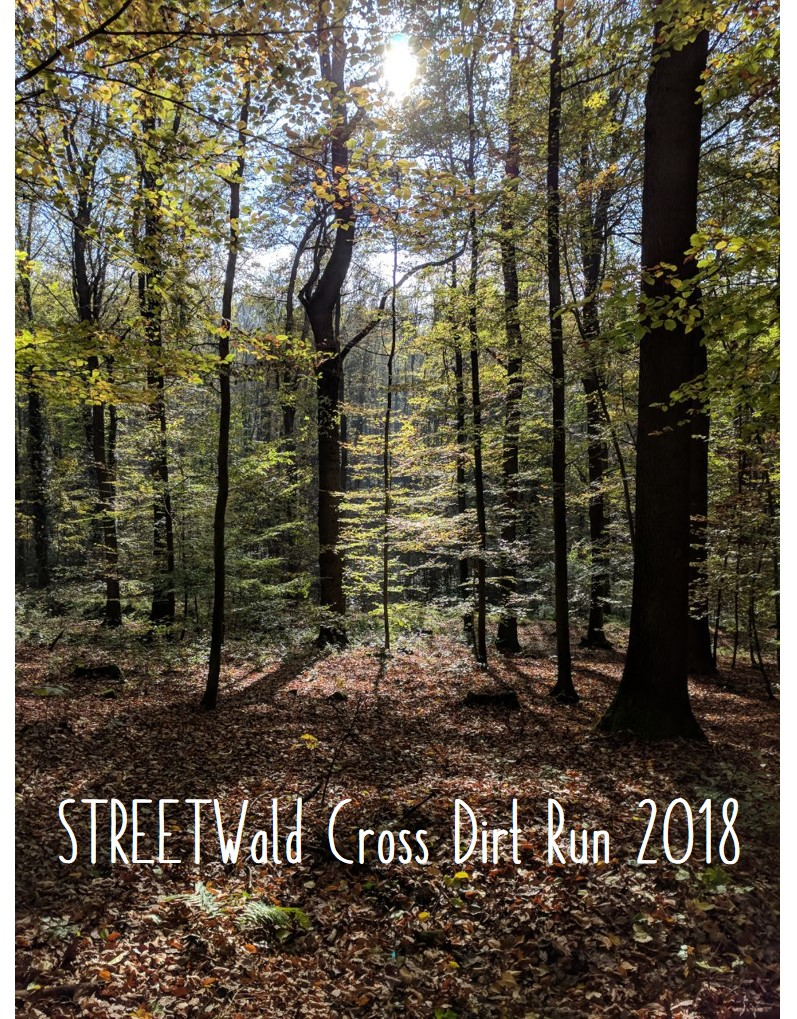 3. STREETWald Cross DIRT Run