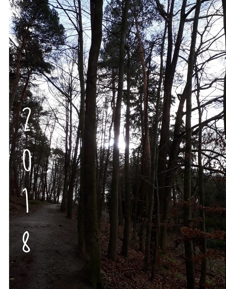 Neujahrs-Jogging