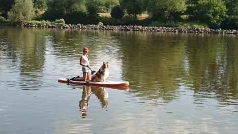 Bild paddling